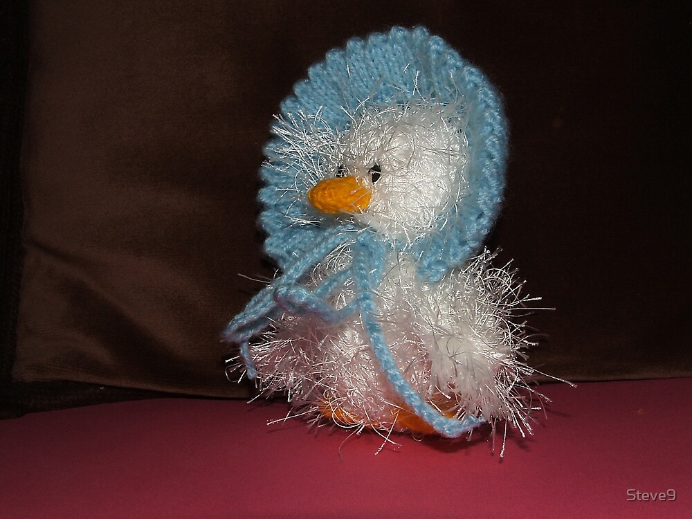 Hand Knitted Duck by Steve9