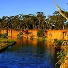 Aussie Landscape - Werribee River by Kathryn Potempski