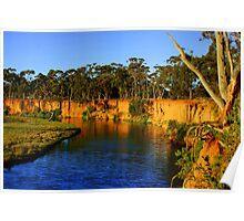 Aussie Landscape - Werribee River Poster