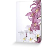 Beautiful Orchid Greeting Card