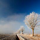 Stoke Frost 4 by SWEEPER