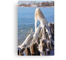 Icy Mane Canvas Print