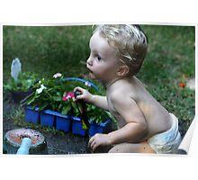 Little Gardener Poster