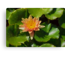 Warm Yellows, Oranges and Corals - a Waterlily Impression Canvas Print