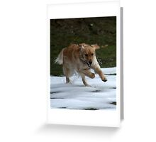 And Resume Speed Greeting Card