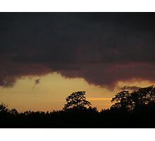 Sunset and trees Photographic Print