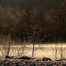 14.3.2015: Cold Spring Morning by the River by Petri Volanen
