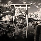 Japanese Gardens by Sarah McTernen