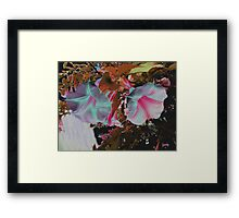Colorized White trumpets Framed Print