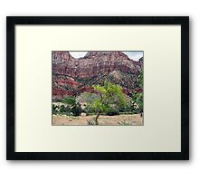Horse Range Mountain Zion NP Framed Print