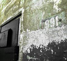 Door_991 by I333I