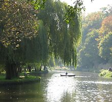 Willows and row-boats by profusemoose