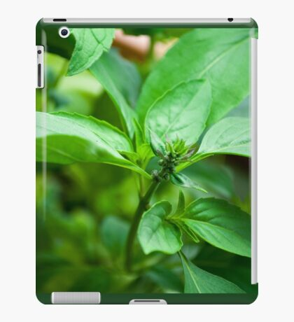 Kitchen Crop iPad Case/Skin