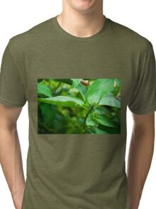 Kitchen Crop Tri-blend T-Shirt