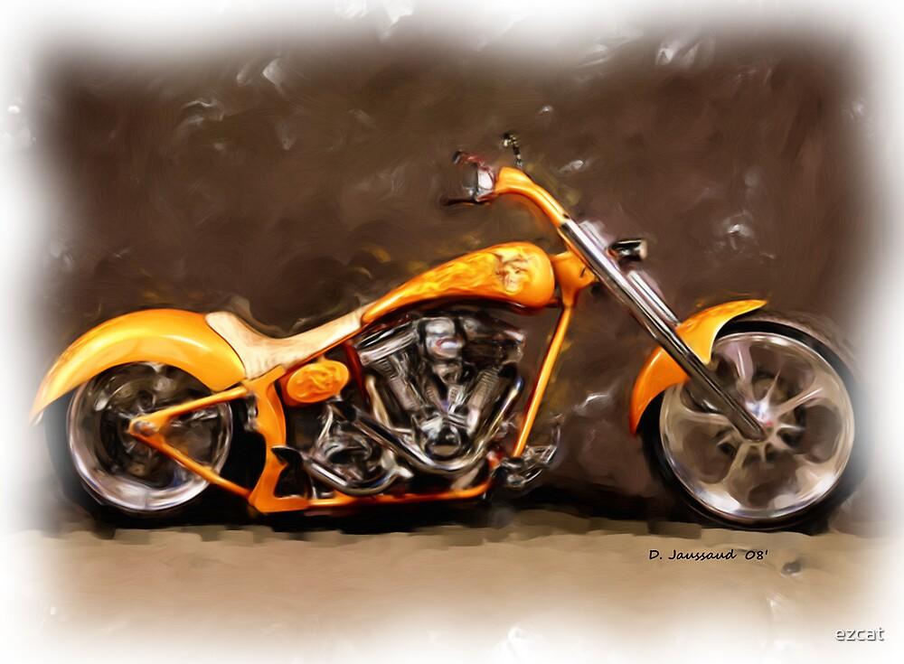 Nice Custom Low Ride Bike... by ezcat