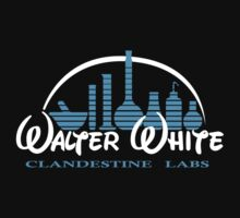 Walter White Clandestine Labs Heisenberg by harahap88