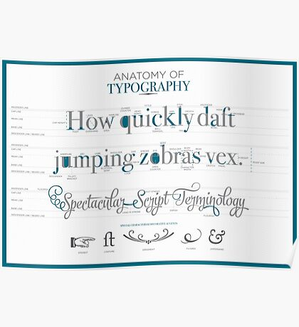 Anatomy of Typography Poster