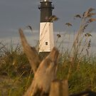 "Driftwood Light by Arthur ""Butch"" Petty"