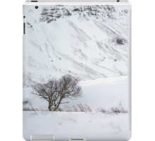 Scottish Winter Scene iPad Case/Skin