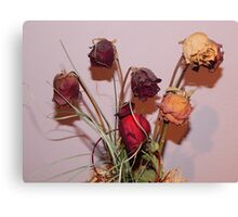 Withered Roses Canvas Print