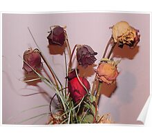 Withered Roses Poster