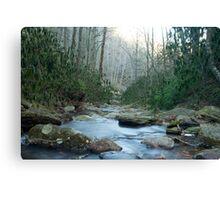 Roaring fork river Canvas Print