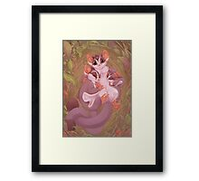 Sugar Gliders Framed Print