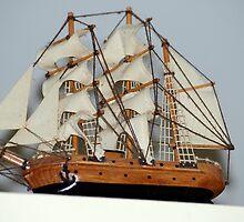 The Mayflower by Donna Adamski