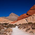 Red Rock Canyon by Fraser Ross