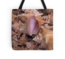 Queen Conch Shells Tote Bag