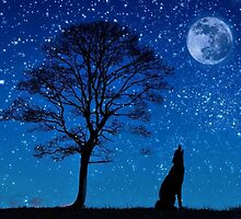 Lonely Howling Wolf by imphavok