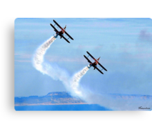 The Only Way To Fly! Canvas Print