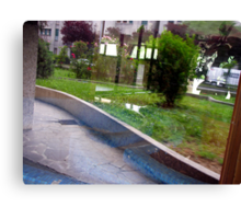 Garden mirroring in a windowed door Canvas Print