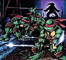 TMNT graphic novel by piranhaclan
