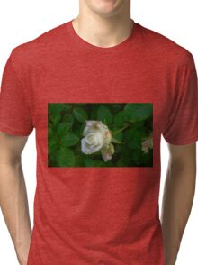 Little white rose 8 Tri-blend T-Shirt