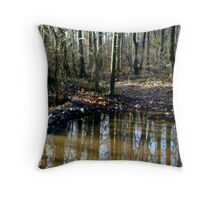 Morning water refelctions '09 Throw Pillow