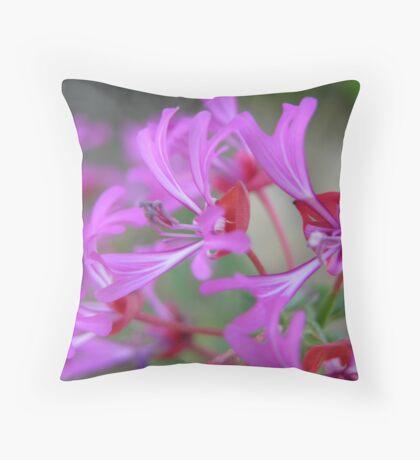 Ribbon Clarkia Throw Pillow