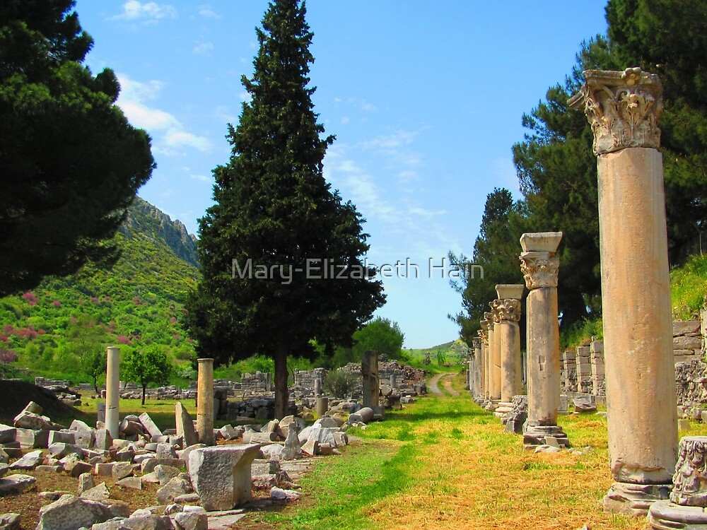 Ancient Agora of Ephesus by M-EK