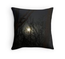 Silvery Moon Throw Pillow