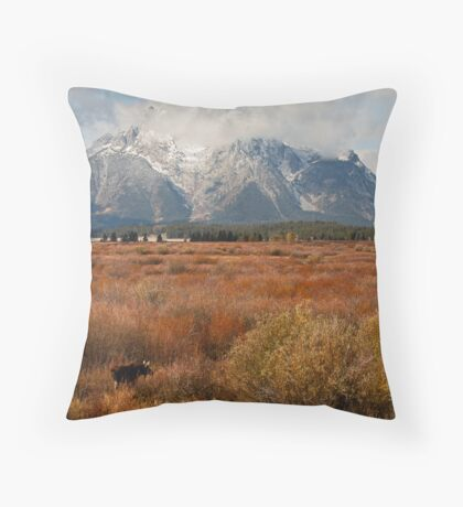 Red Willow Flats Throw Pillow