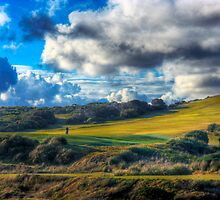 The Golfer II by Mark Richards