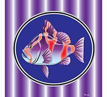 Purple fish Photographic Print