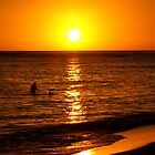 Hawaiian Sunset by Shenelle
