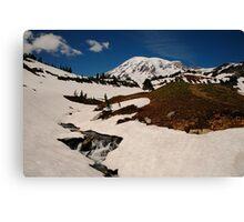 Early Summer at Mount Rainier Canvas Print
