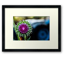 Thistle and Tractor Framed Print