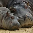 Mother and Son by Norman Repacholi