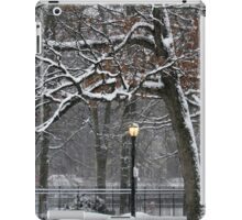 March Snow in New York City  iPad Case/Skin