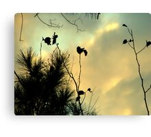 Pretty Sky and Silhouettes Canvas Print