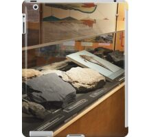 Fossil Collection 1  iPad Case/Skin