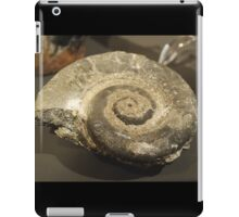Fossilized Shell iPad Case/Skin